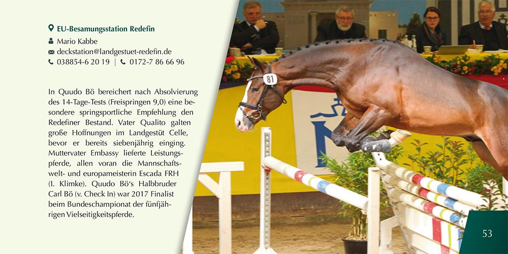 Hengstparade Redefin 2021